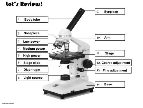 parts of the microscope worksheet - Termolak